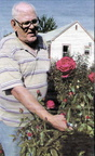 Vince Rickert ('62)-Oct 2008 - has over 235 rose bushes in his Toppenish yard