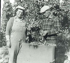 Martha and Henry Meyers picking hops by hand in 1932.